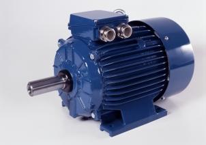 Dviejų greičių elektros varikliai